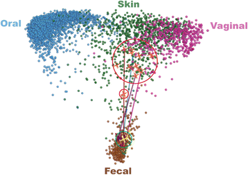 """Fecal bacterial communities of recurrent [ C. diff ]  patients shift towards [healthy] fecal bacterial communities after FMT.   Pre-FMT patient samples (red circle); post-FMT patient samples (green circles); trajectory of patient fecal communities after FMT (blue line).""   Image and caption from the   C. diff   paper:  Weingarden  et al.   Microbiome   2015   3  :10   doi:10.1186/s40168-015-0070-0"