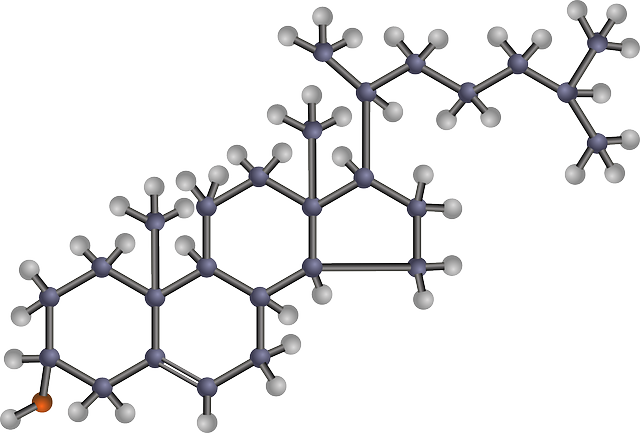 Molecular structure of cholesterol