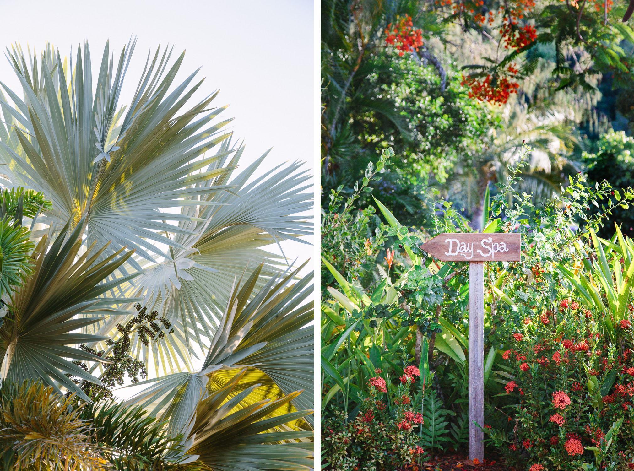 emma byrnes, orpheus island