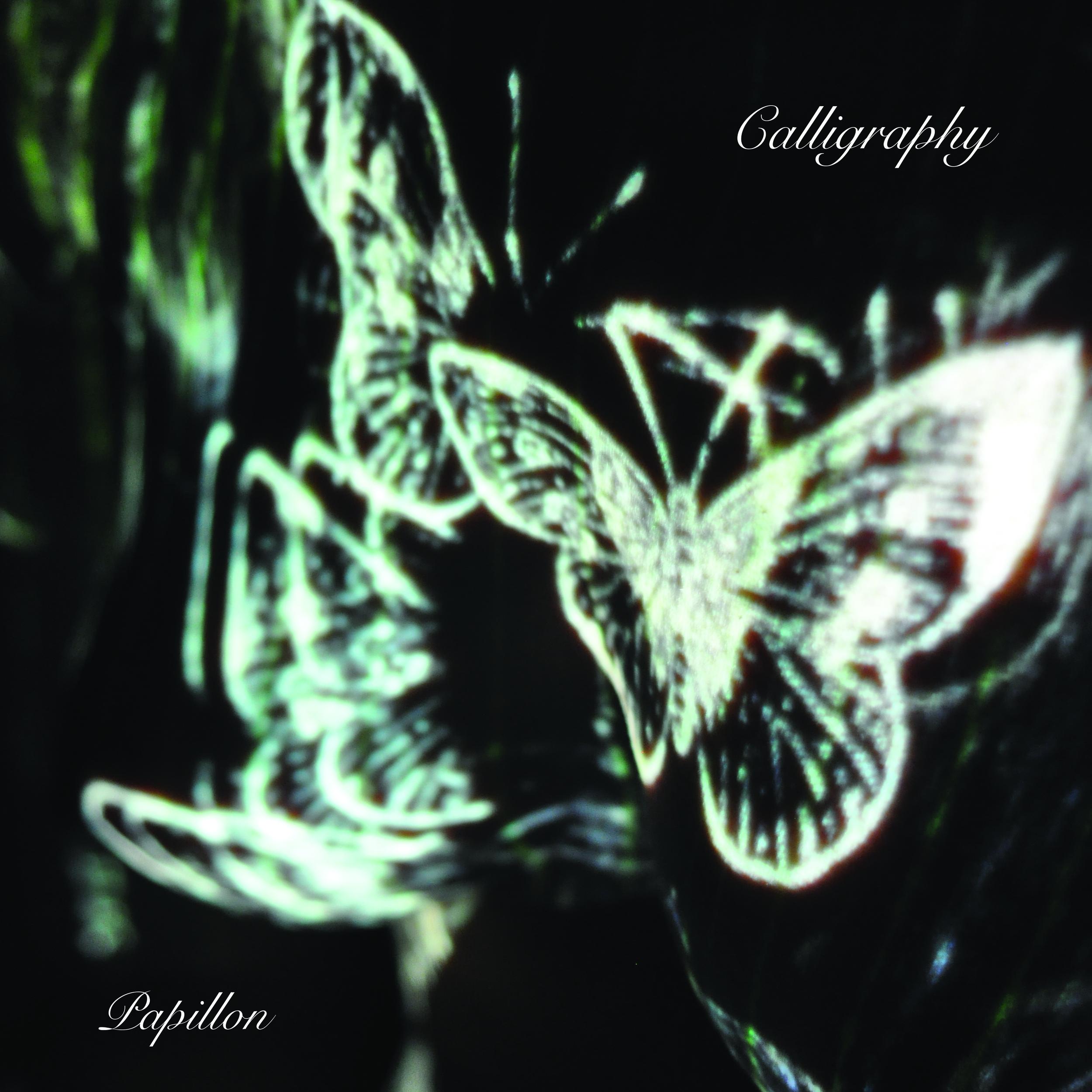 """Calligraphy"" Papillon - Double vinyl - BSURE 2014"