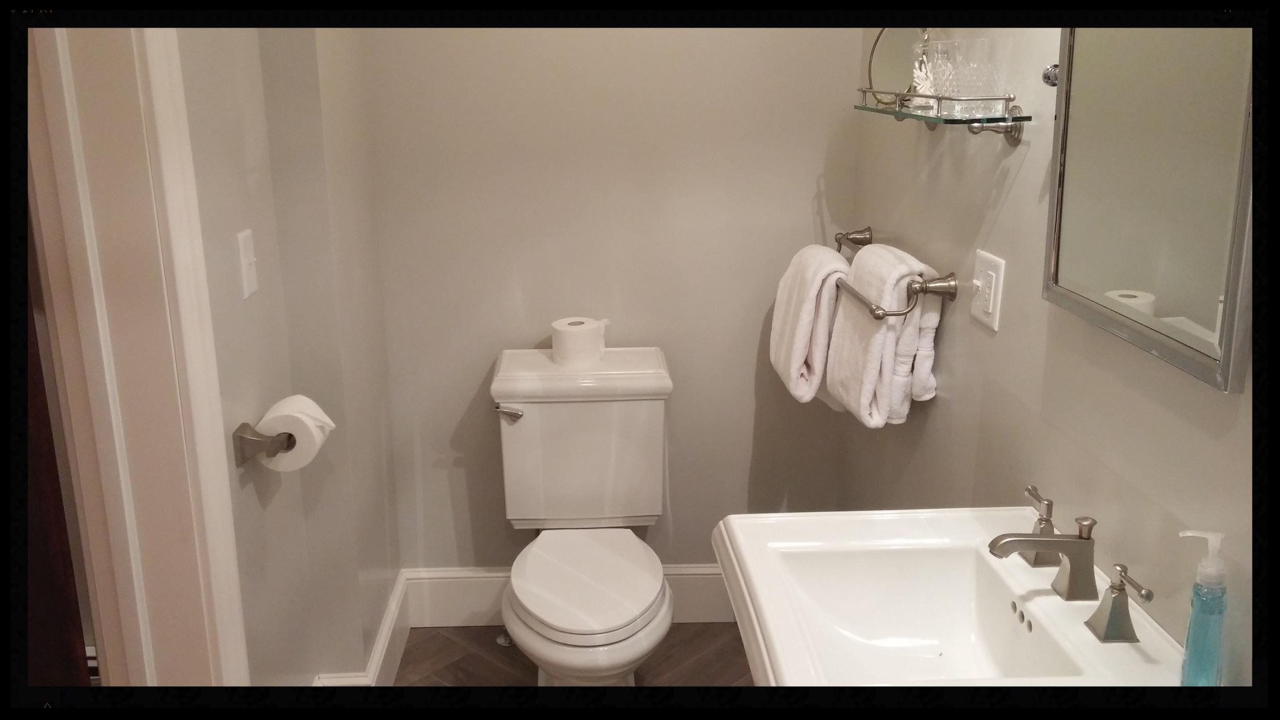 Excelsior bathroom with pedestal sink