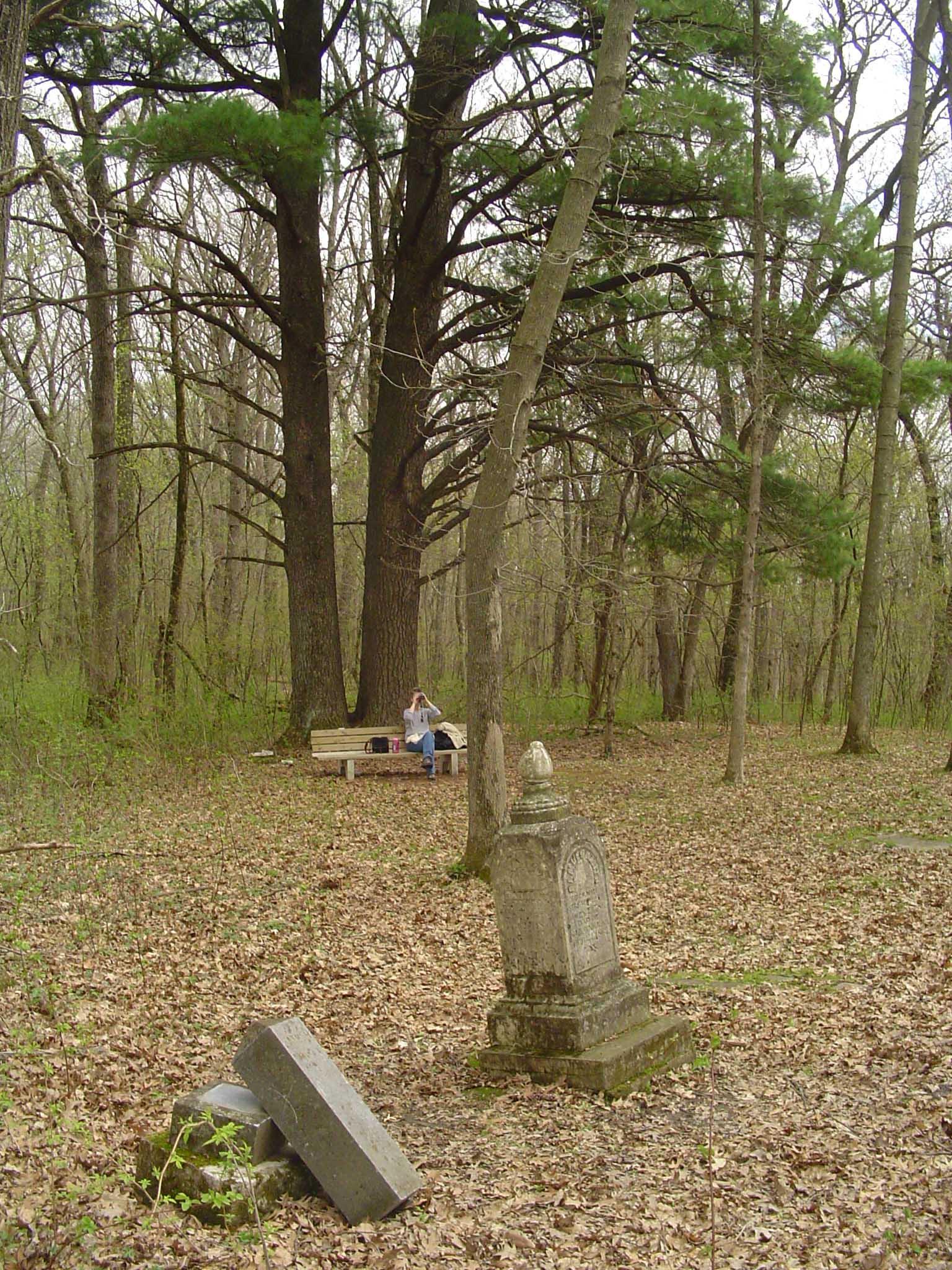 Forestville_CemeteryView.jpg