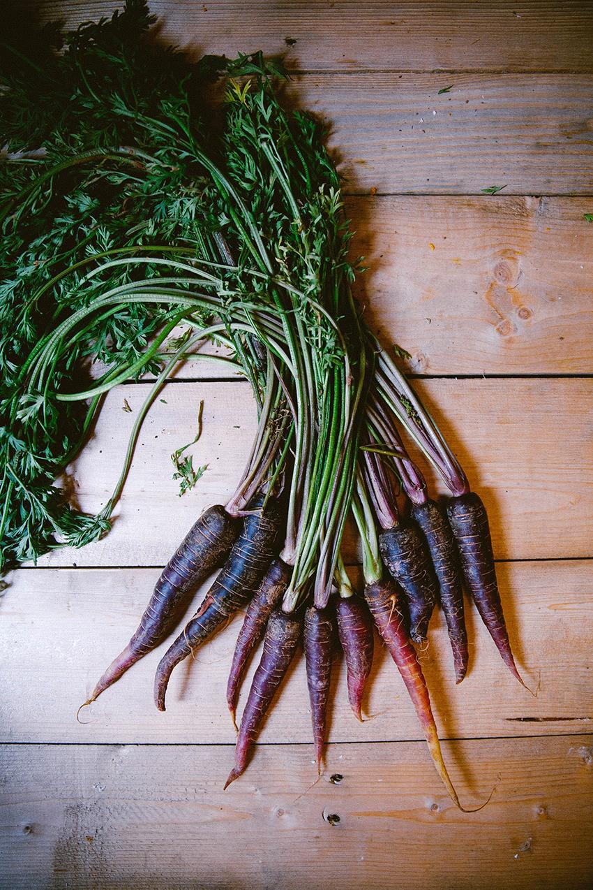 2013-Carrots.jpg