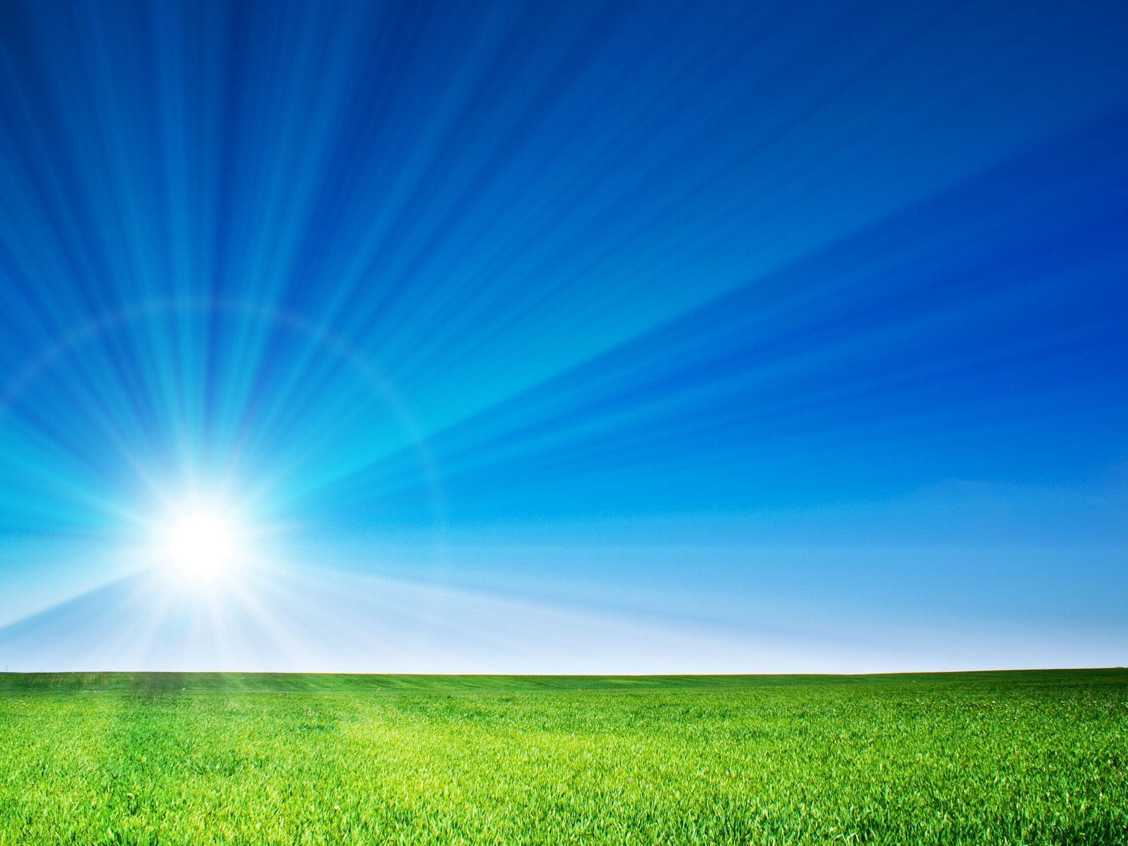 Sky%2C+grass%2C+sunlight.jpg