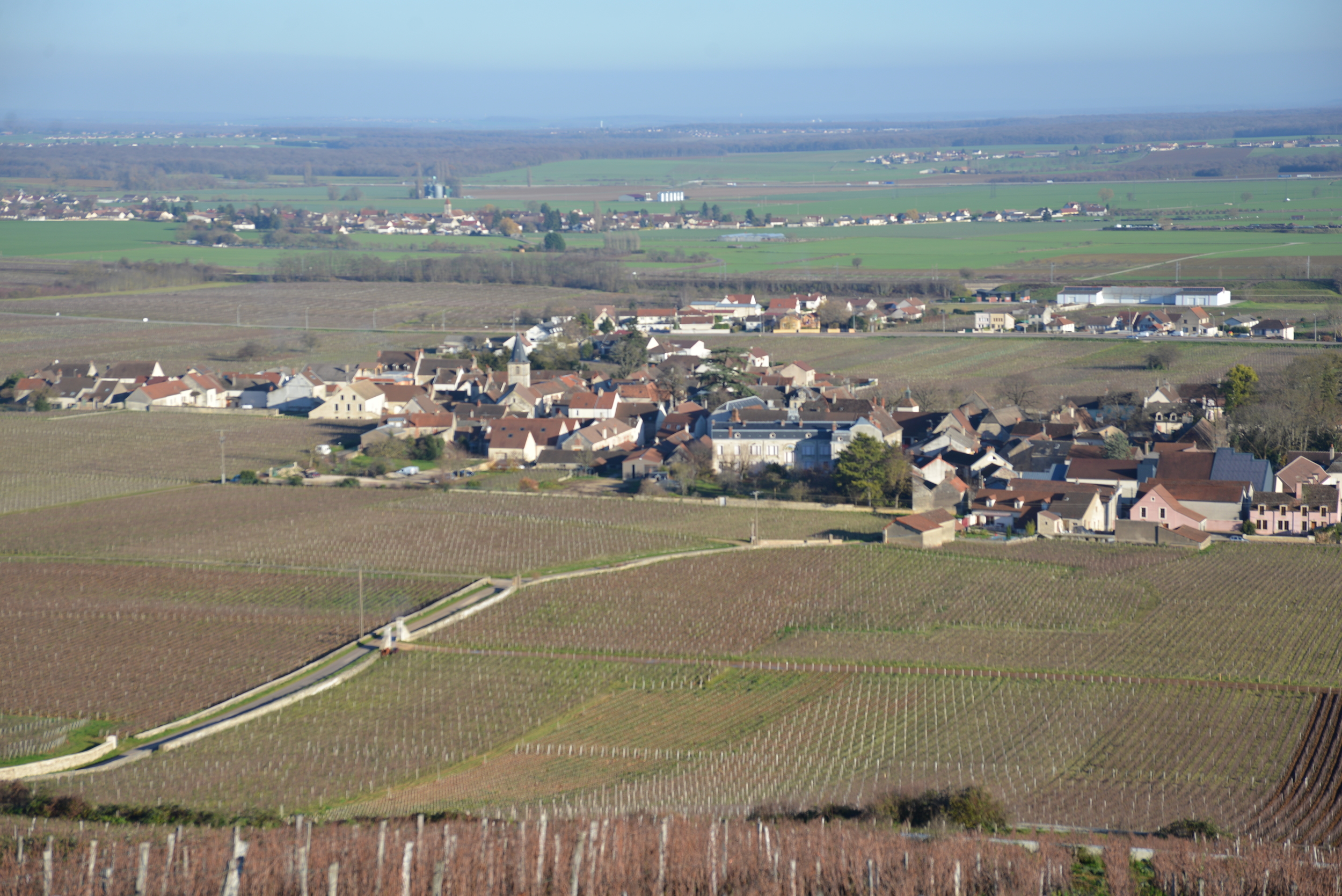 Looking down to Vosne Romanée