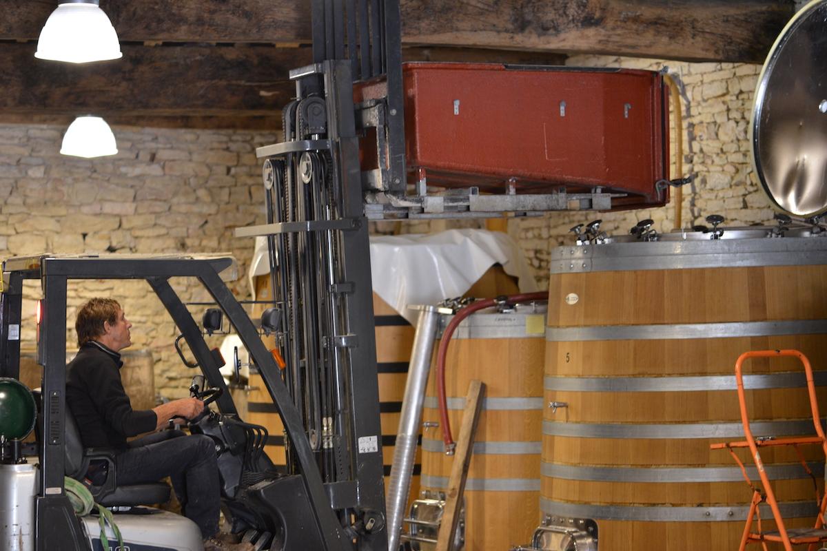 Mazis Chambertin going into the vat