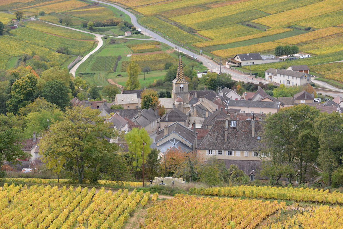 The 1er Cru vineyard Sous Fretille sits above the village of Pernand Vergelesses
