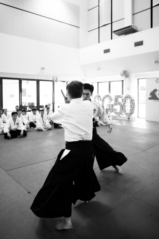 Aikido Singapore Seminar.jpg