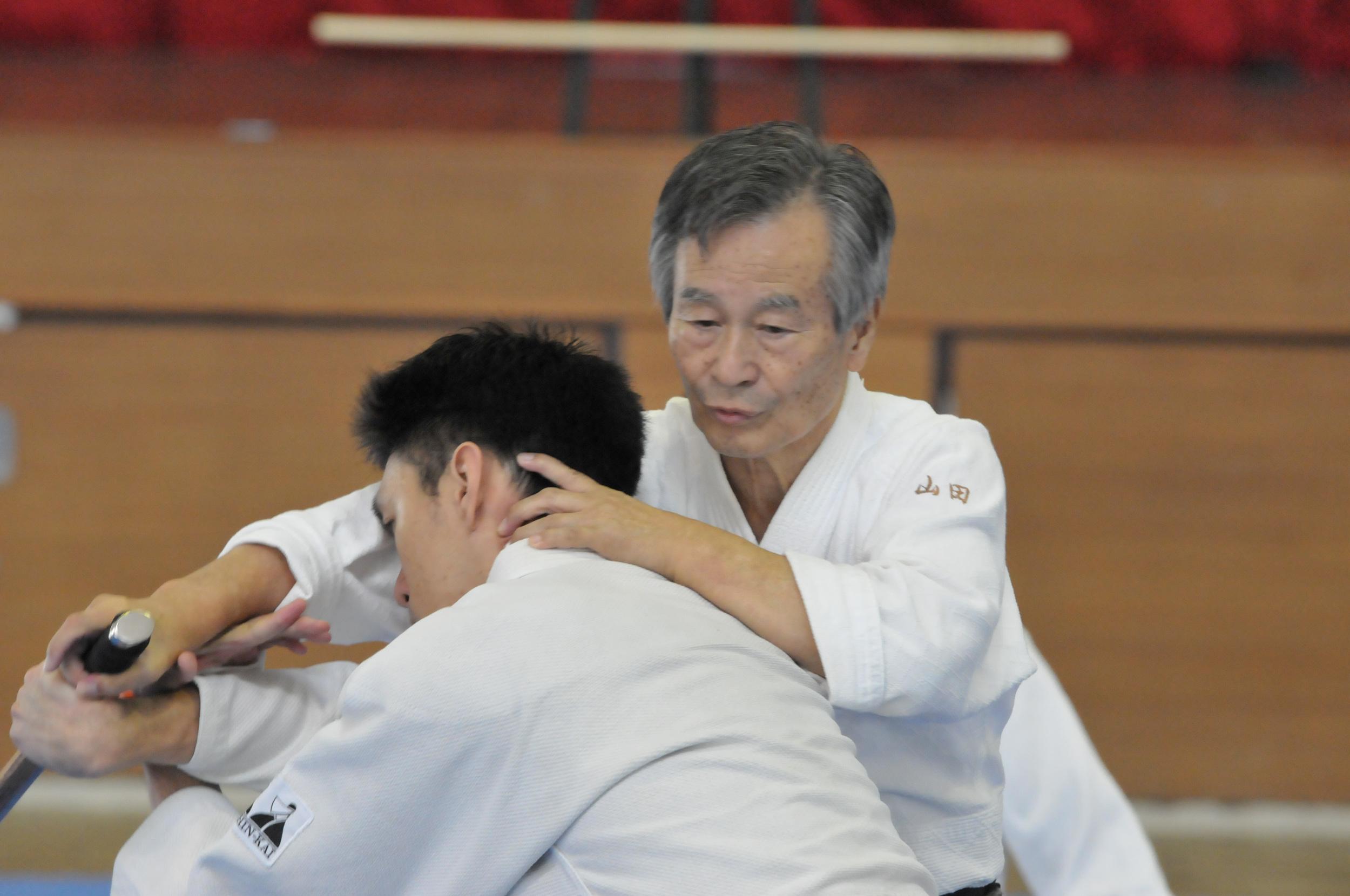 Aikido Tai Shin Kai Yamada Seminar.jpg