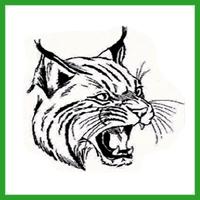 Elgin Wild Cats