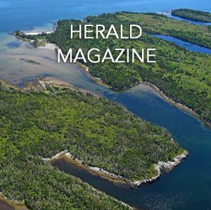 herald magazine.jpg