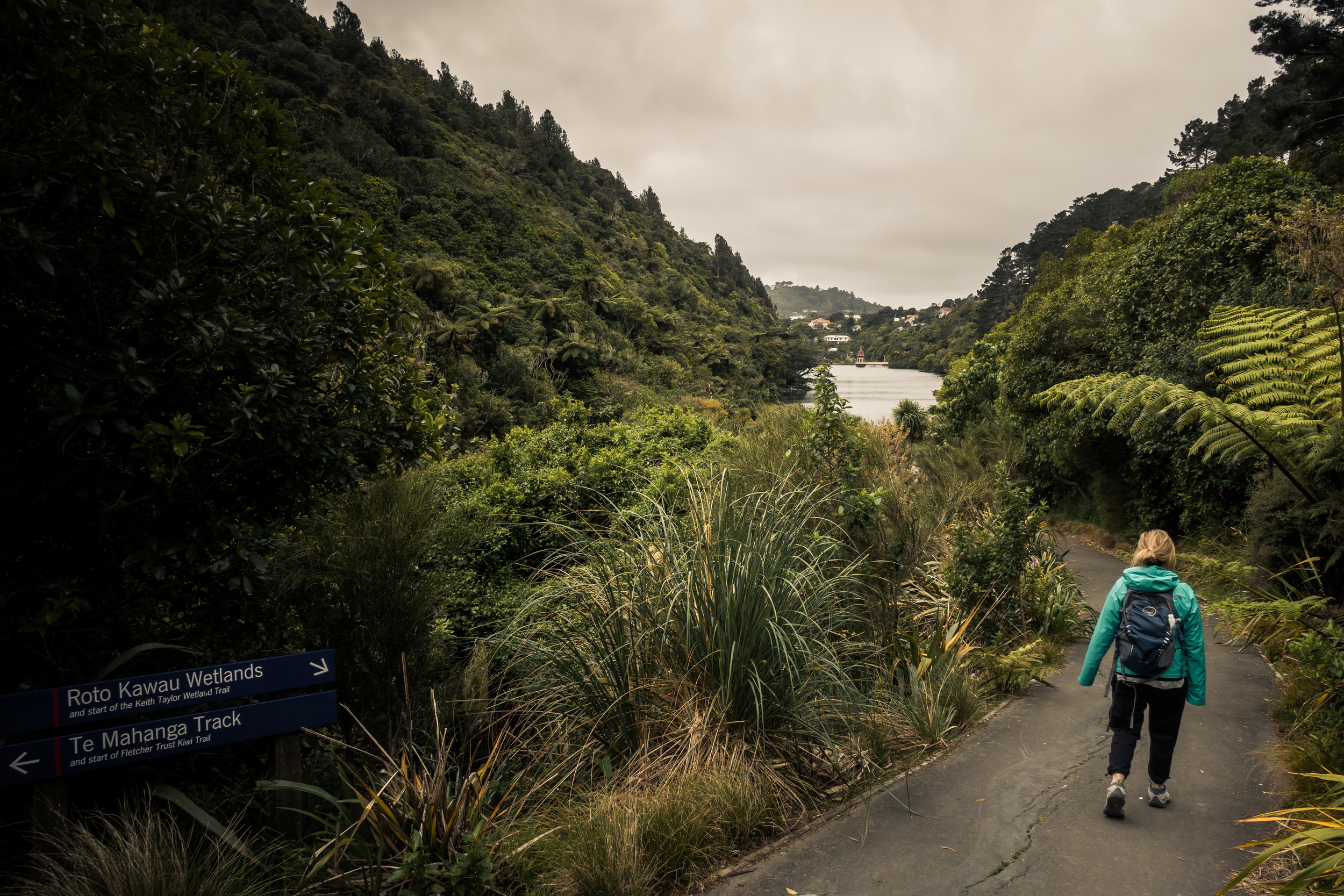 NEW ZEALAND - ZEALANDIA WILDLIFE SANCTUARY