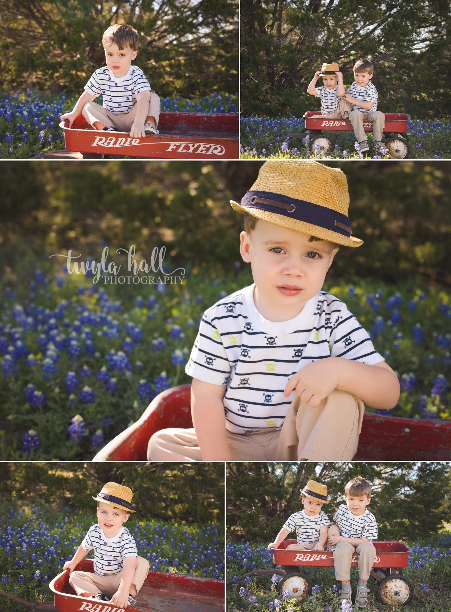 Bluebonnets-Austin-Georgetown-Texas-Spring-2