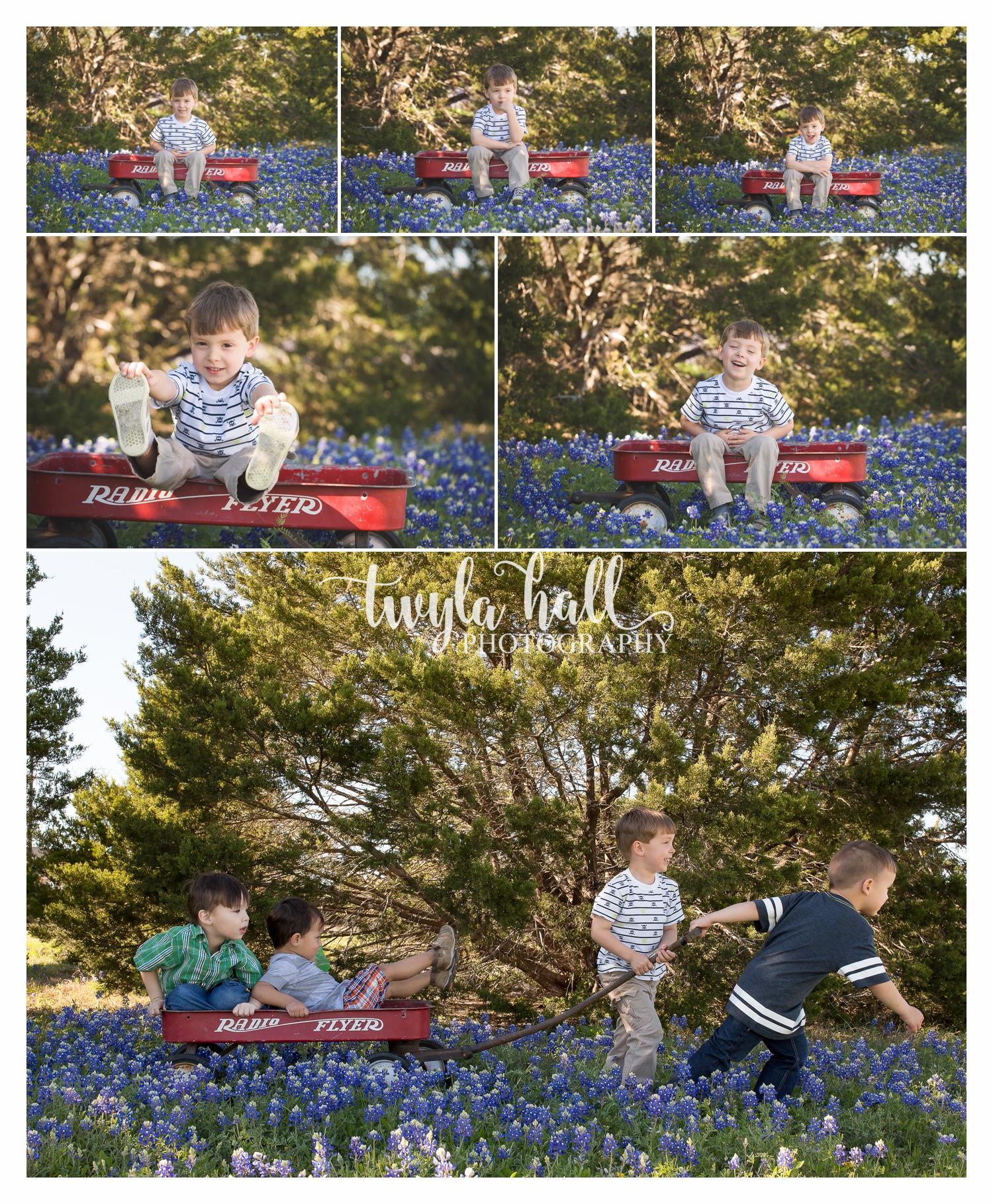 Bluebonnets-Austin-Georgetown-Texas-Spring-3