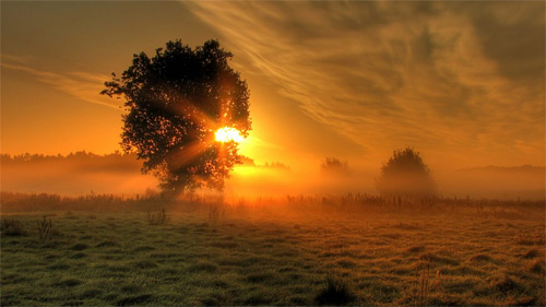 33-fog-sunrise-wallpaper.jpg