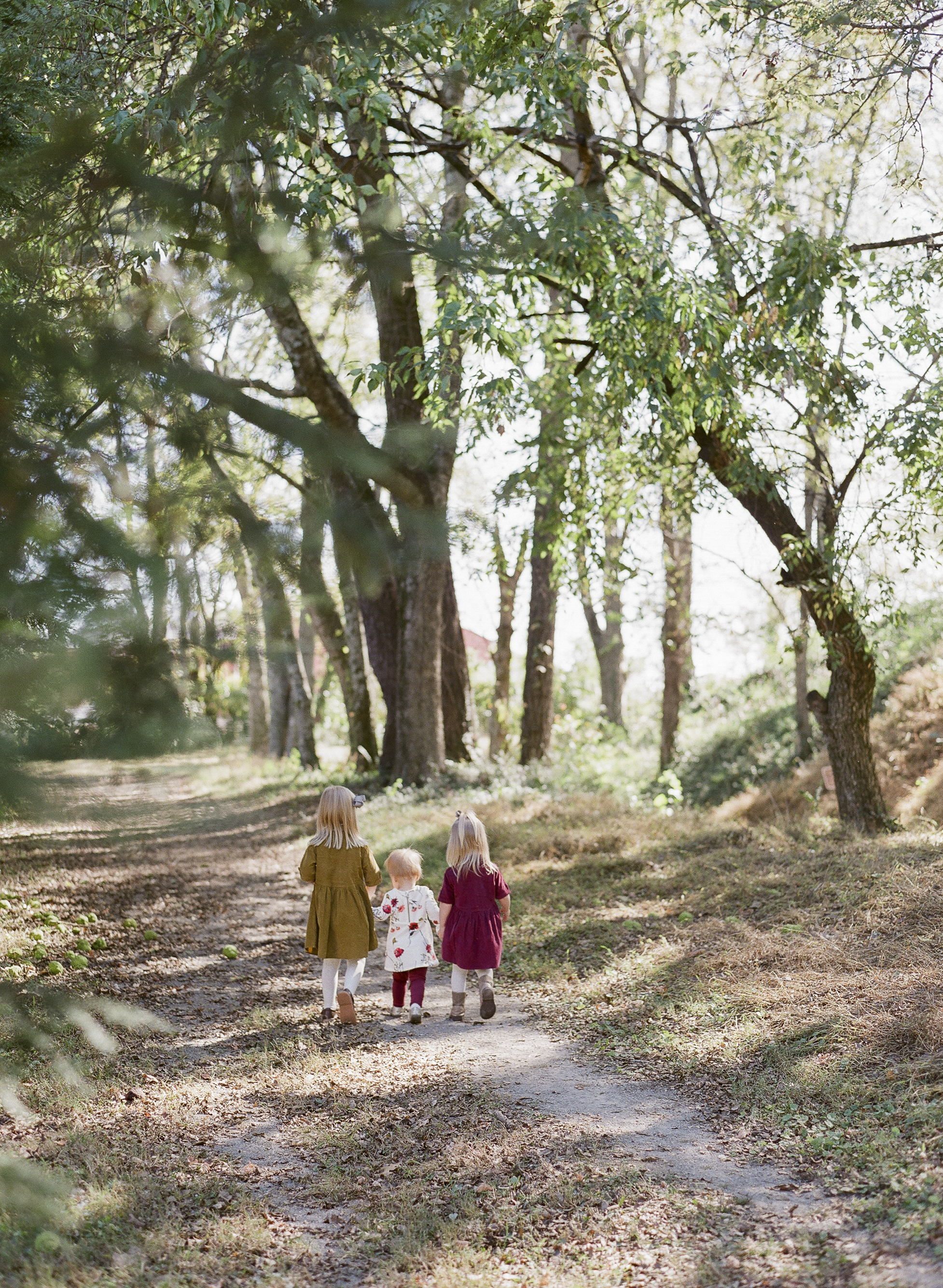 Brandon Chesbro Family Photographer Photo-30.jpg