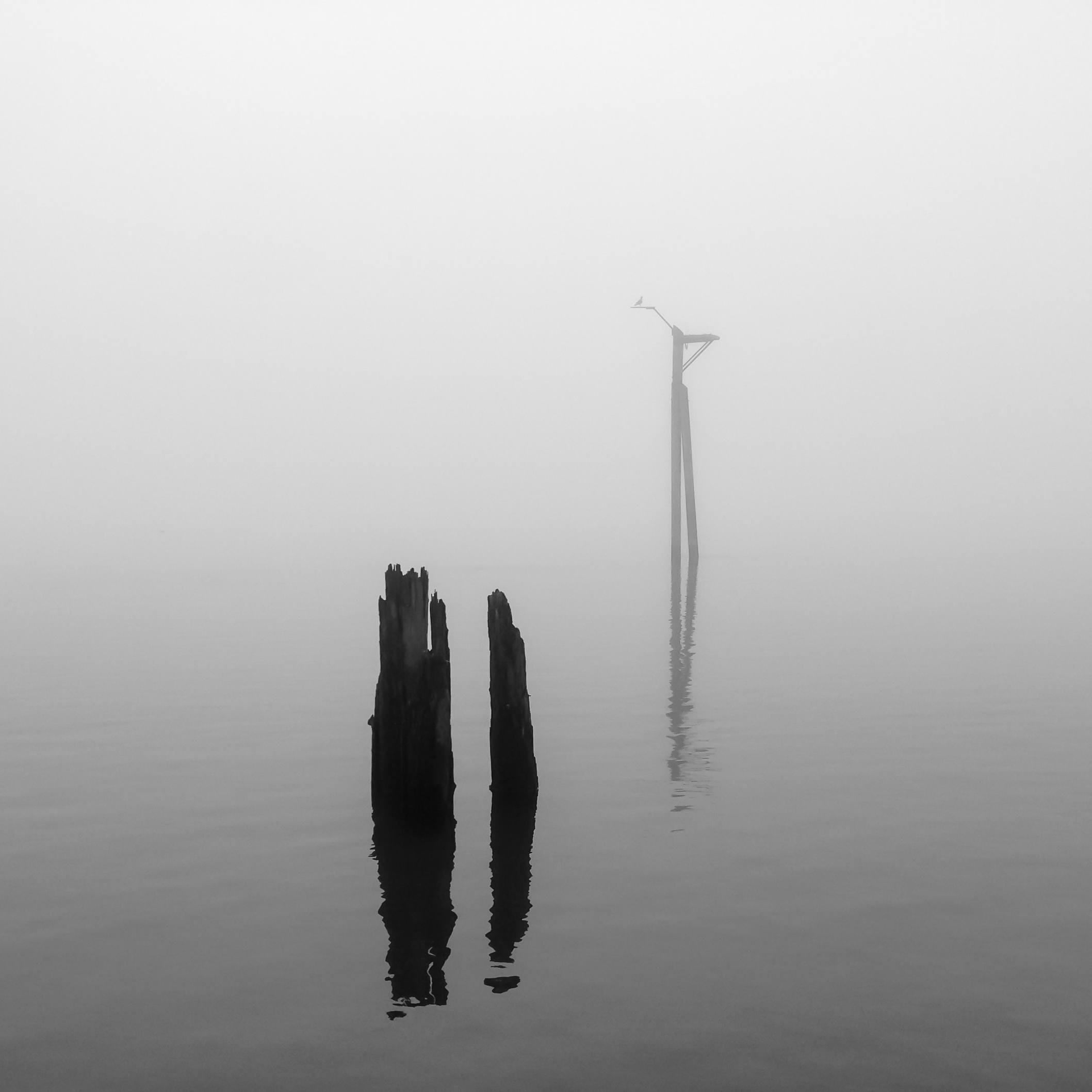 Columbia River in Fog, Vancouver, Washington, 2015