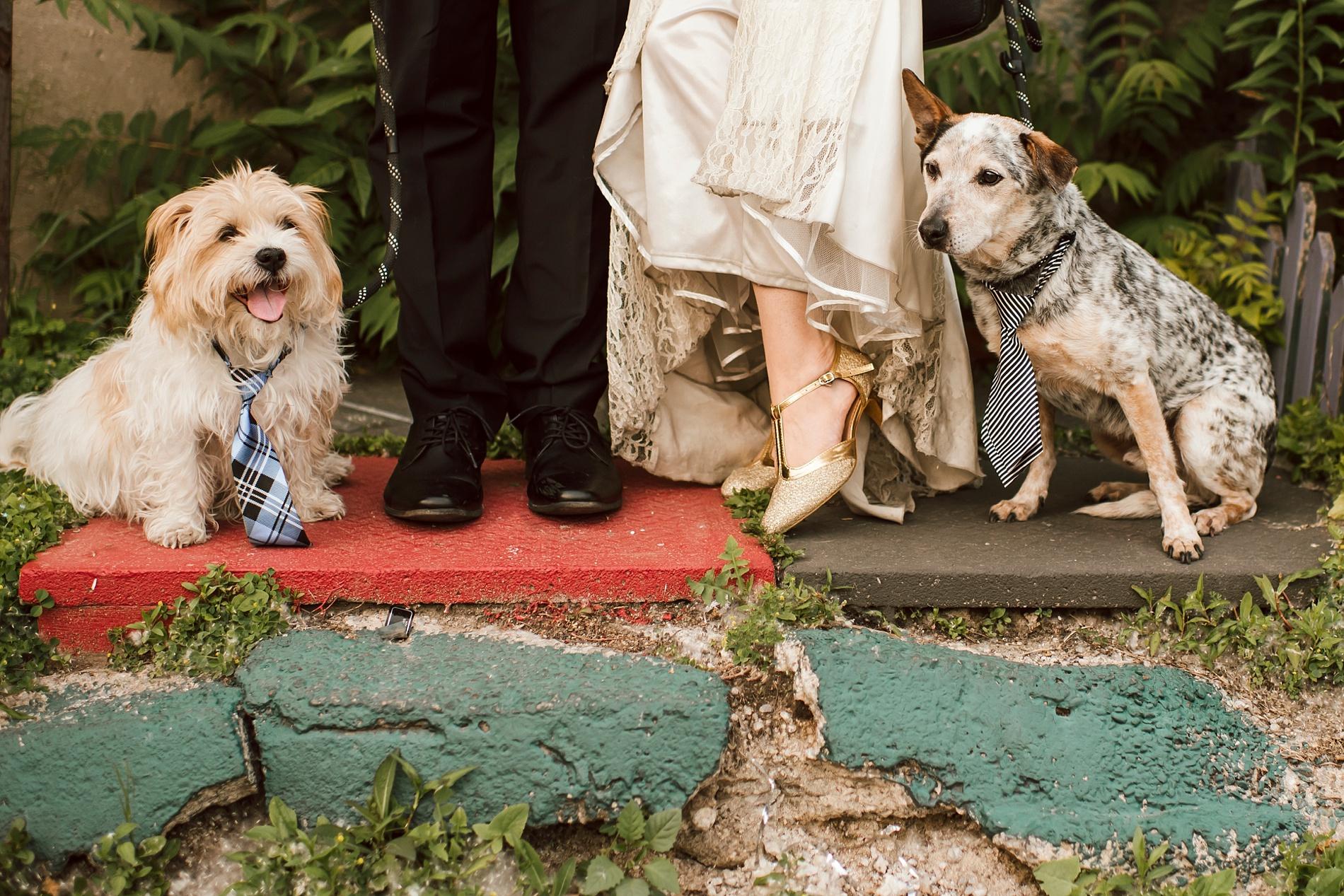 Best_Toronto_Wedding_Photographers_Engagement_shoot_0009.jpg