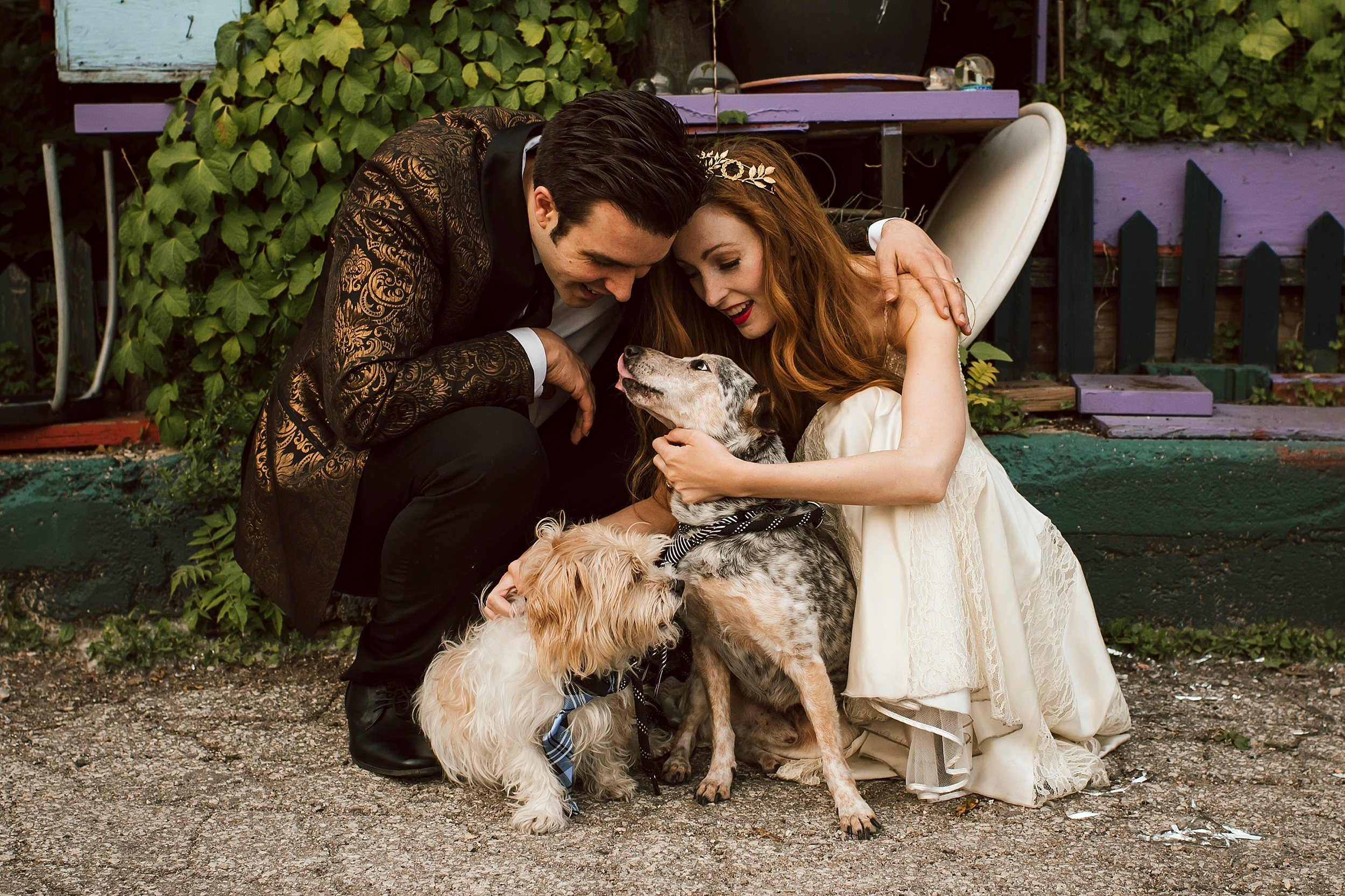 Toronto Post Wedding Shoot with Pups