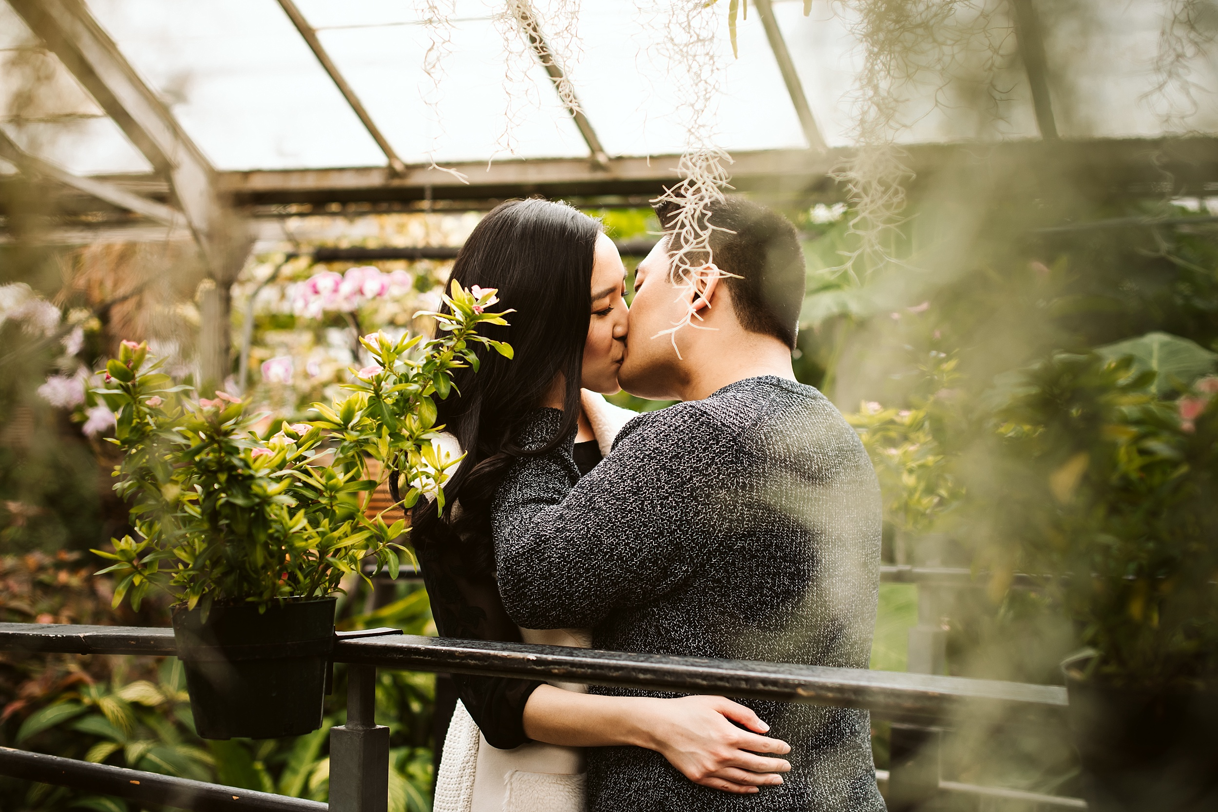 Allan_Gardens_Engagement_Shoot_Toronto_Wedding_Photographer_0004.jpg