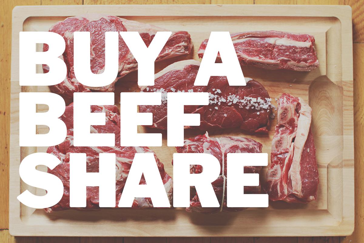 beef overlay.png