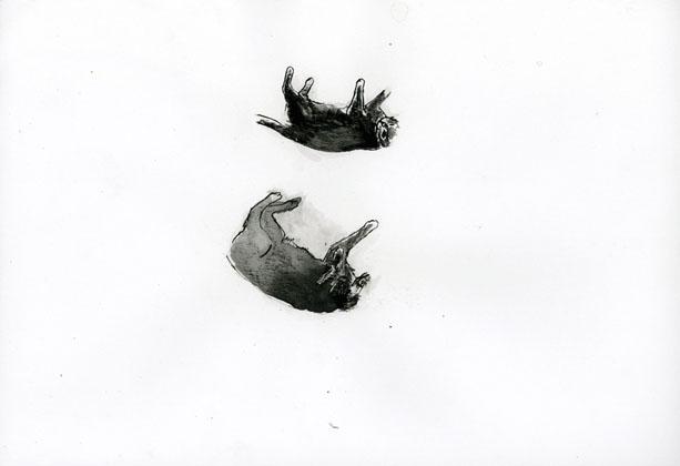 drawings0709_12.jpg