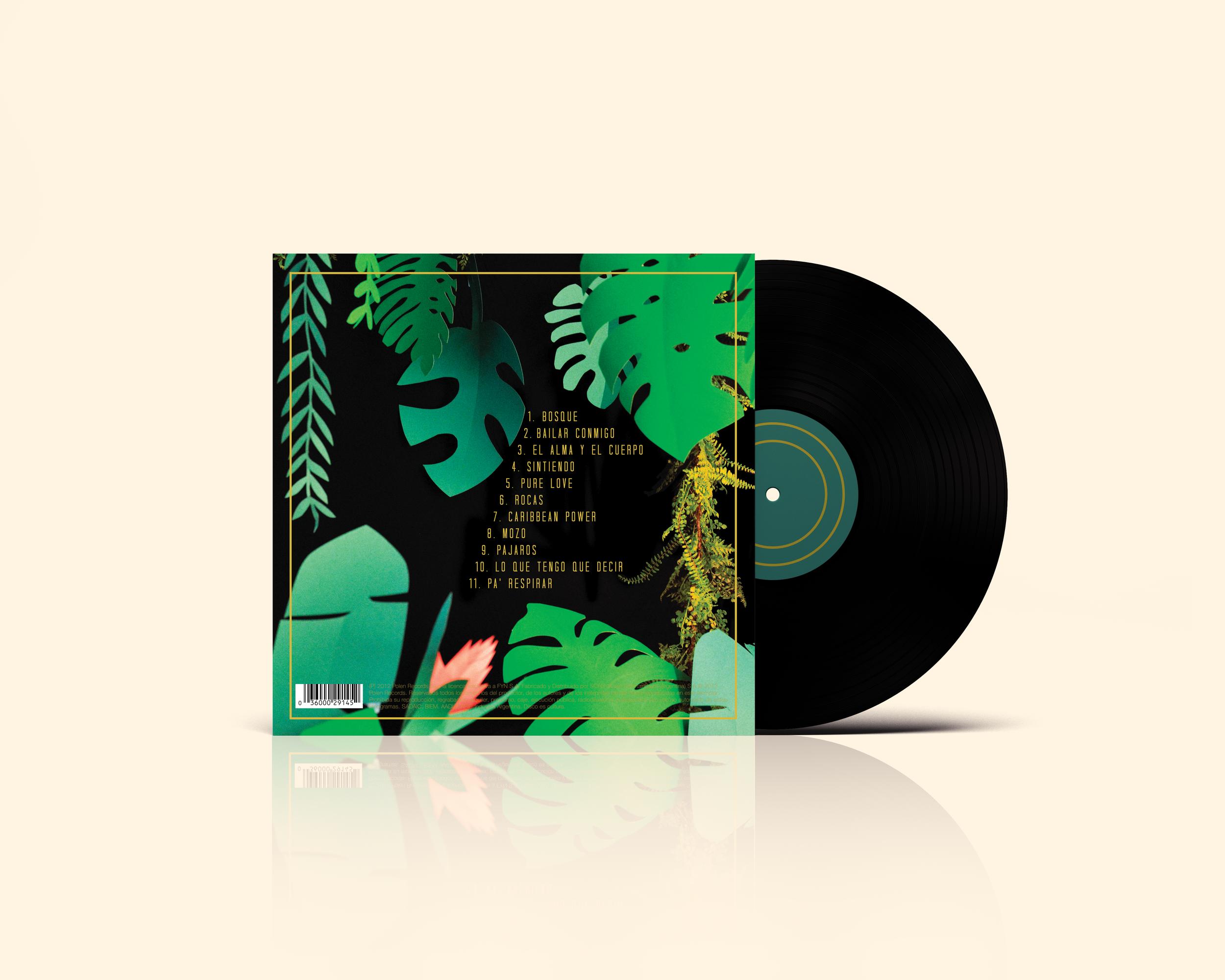 Vinyl Record Mockup back.png