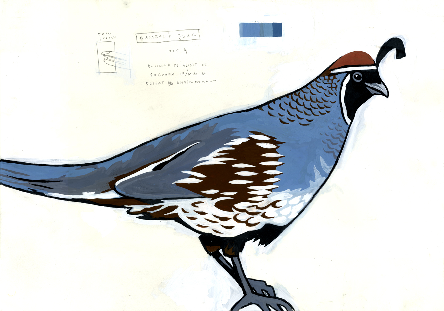 MySci_quail_painting.jpg