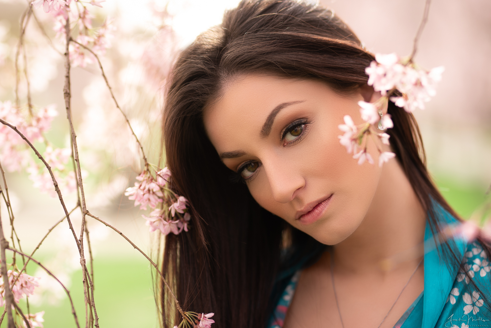 Cherry Blossoms With Jenny Bee