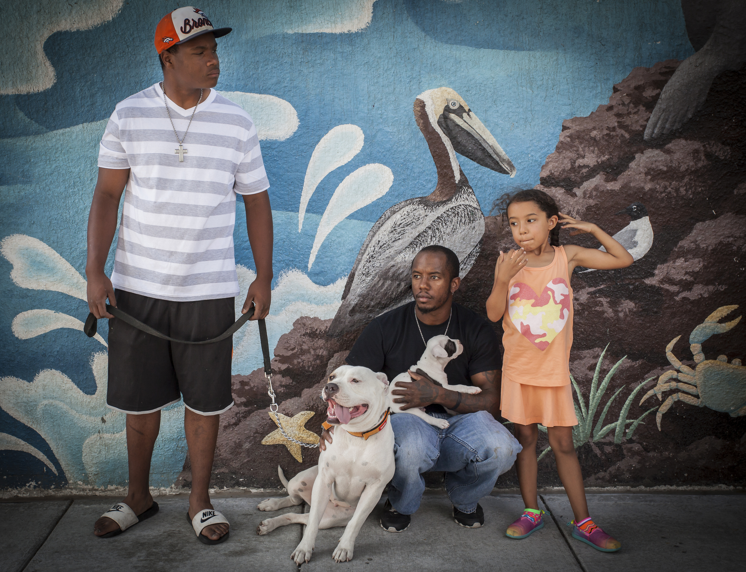 pitbull family 11.5x15-1.jpg