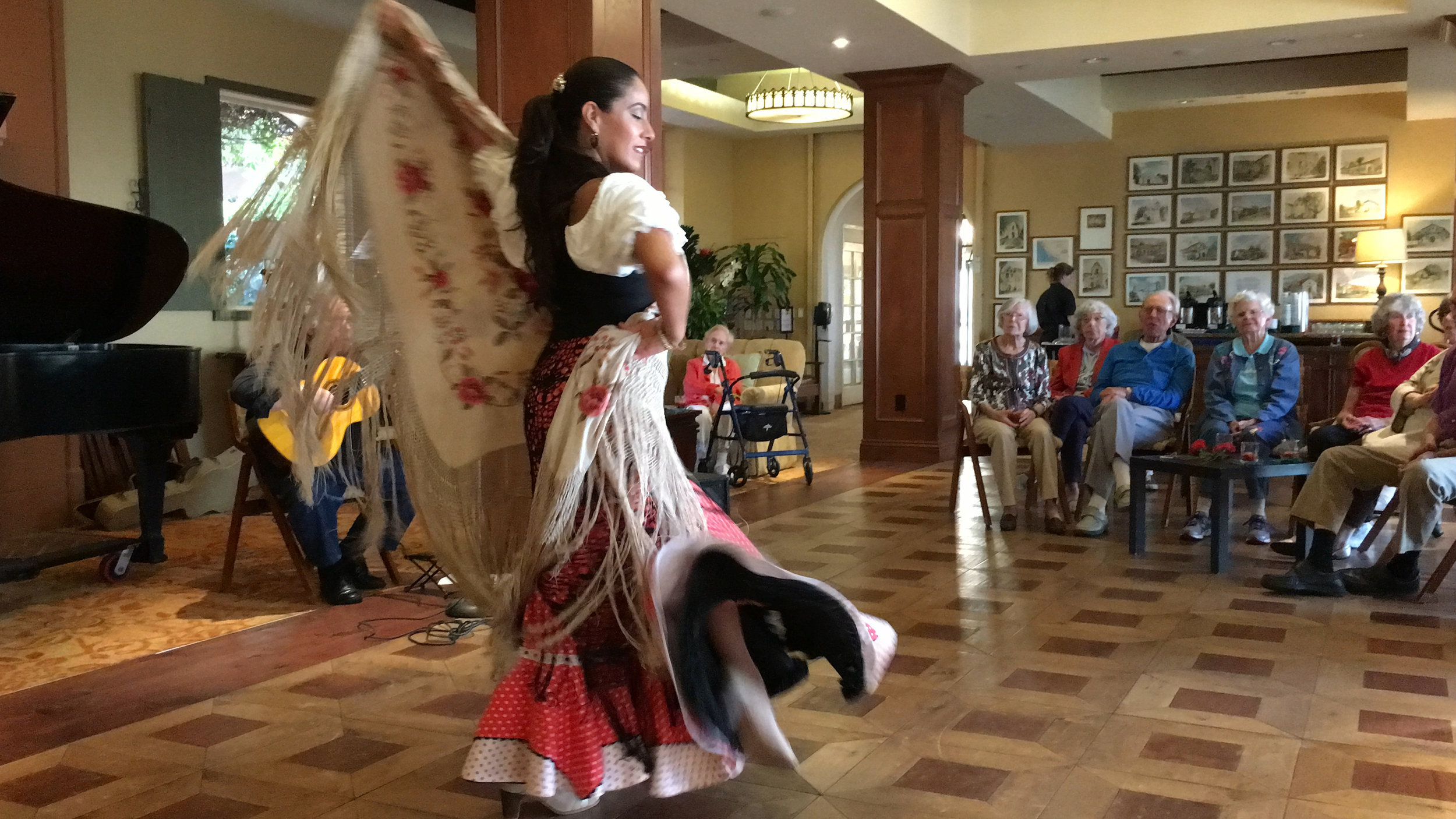 Flamenco CDM Manton.jpg