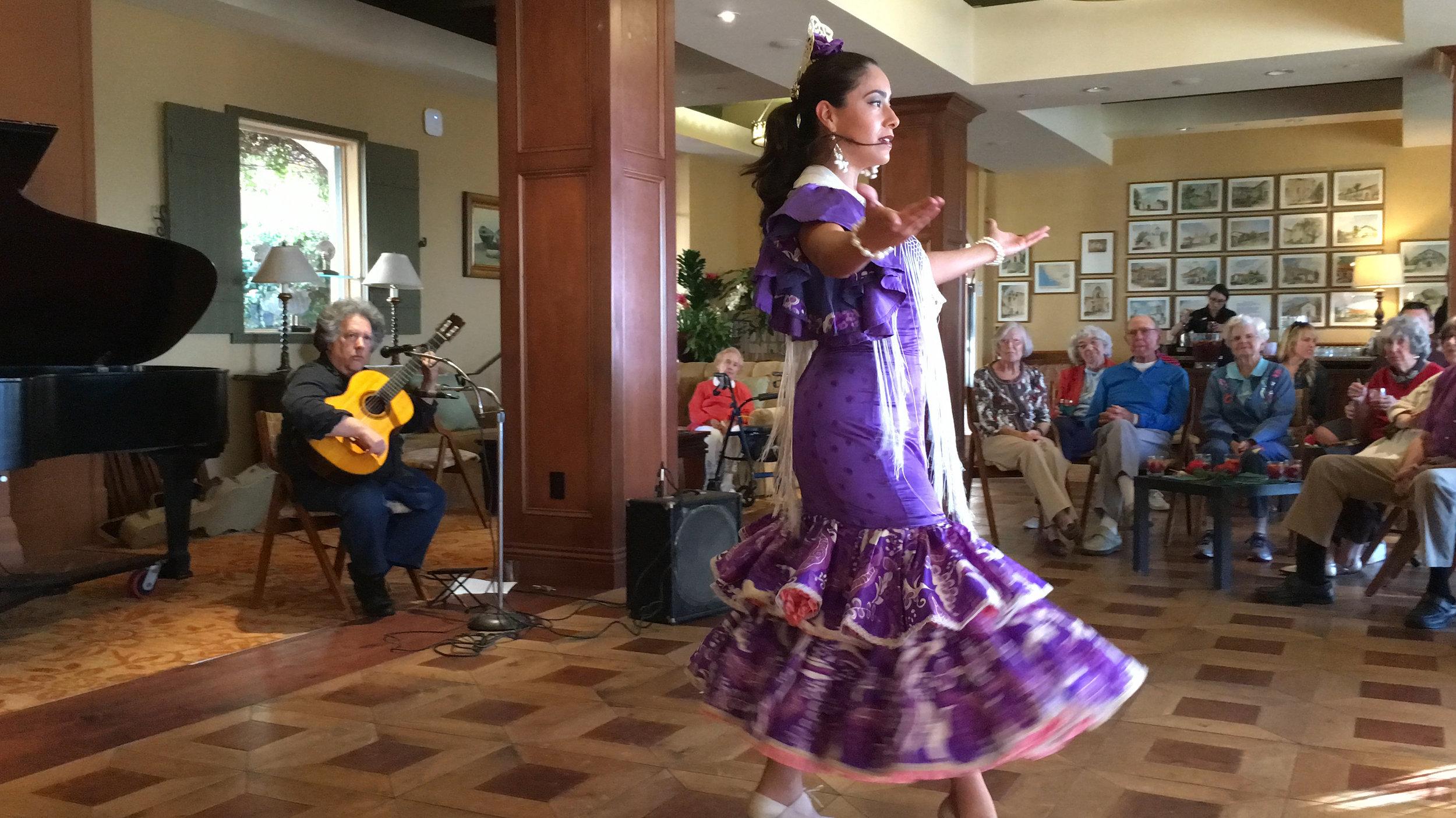 Flamenco CDM Purple 3.jpg