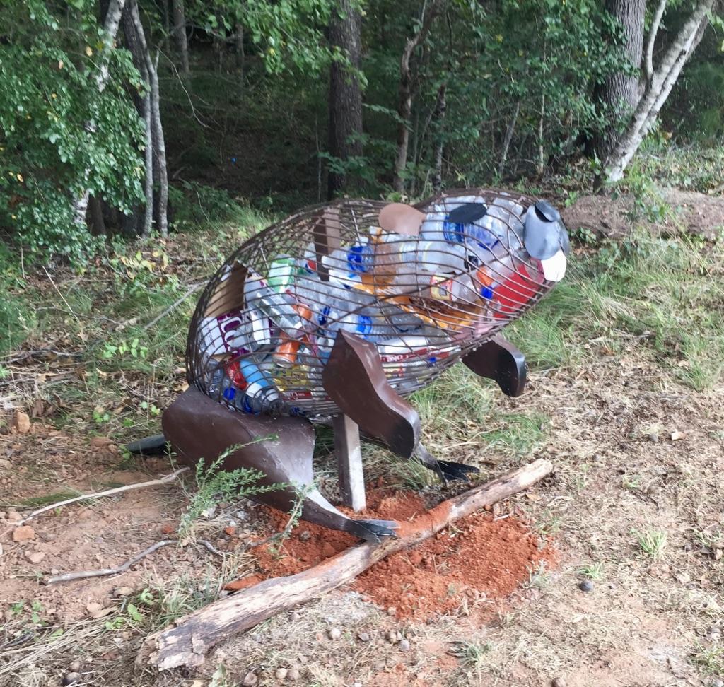 Beaver, 2018  Greenville, SC
