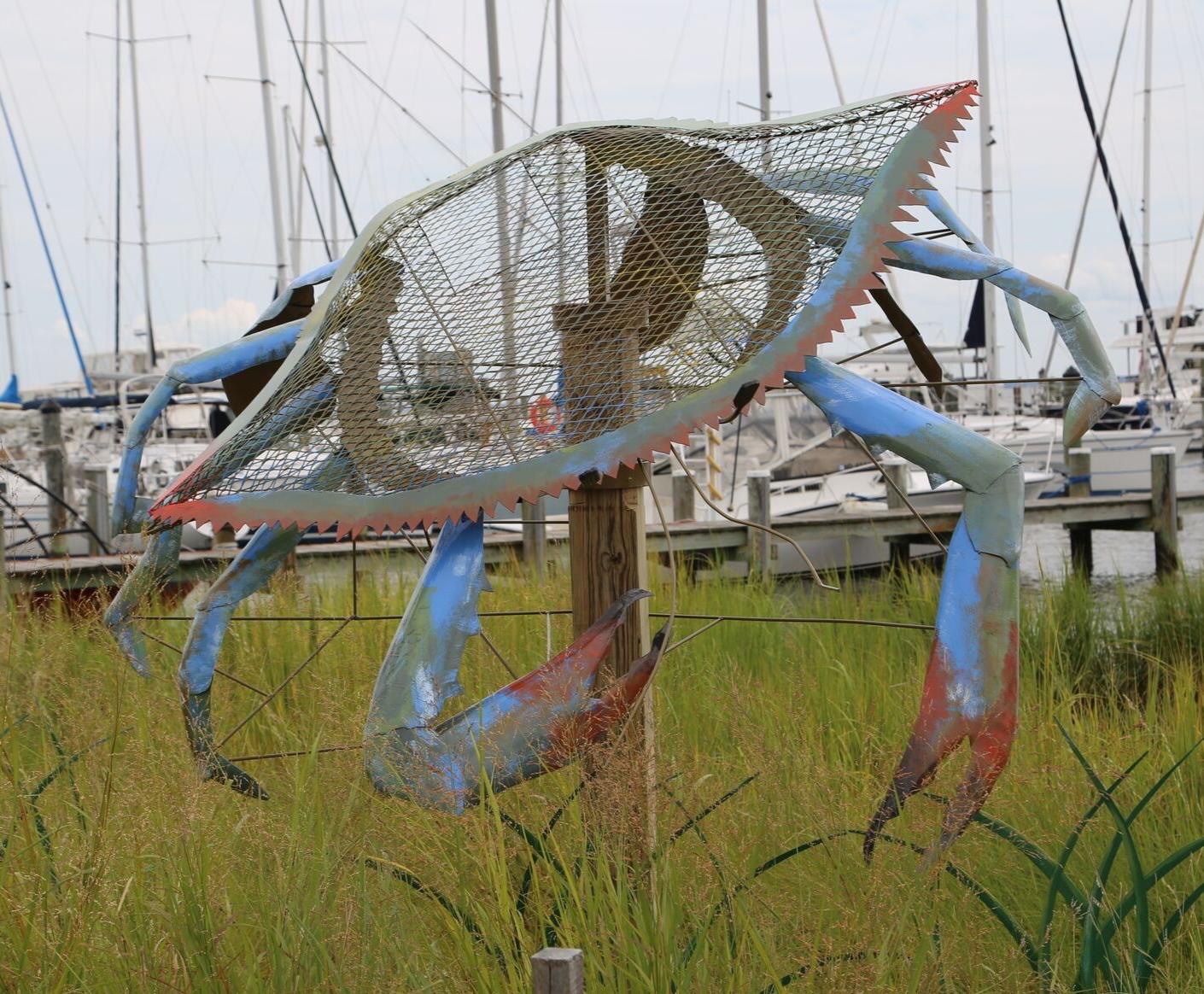 BLUE CRAB - Annapolis Maritime Museum - Annapolis, MD 2017