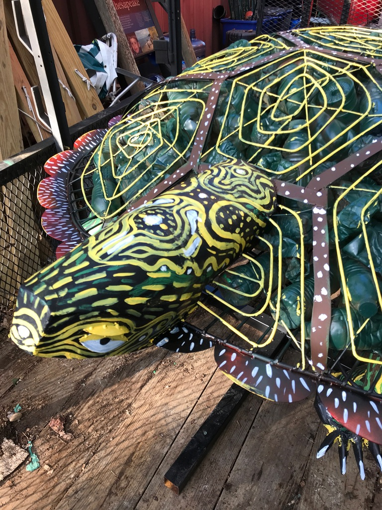 PAINTED LAND TURTLE - Sponsored by OCEAN CONSERVANCY Washington DC.