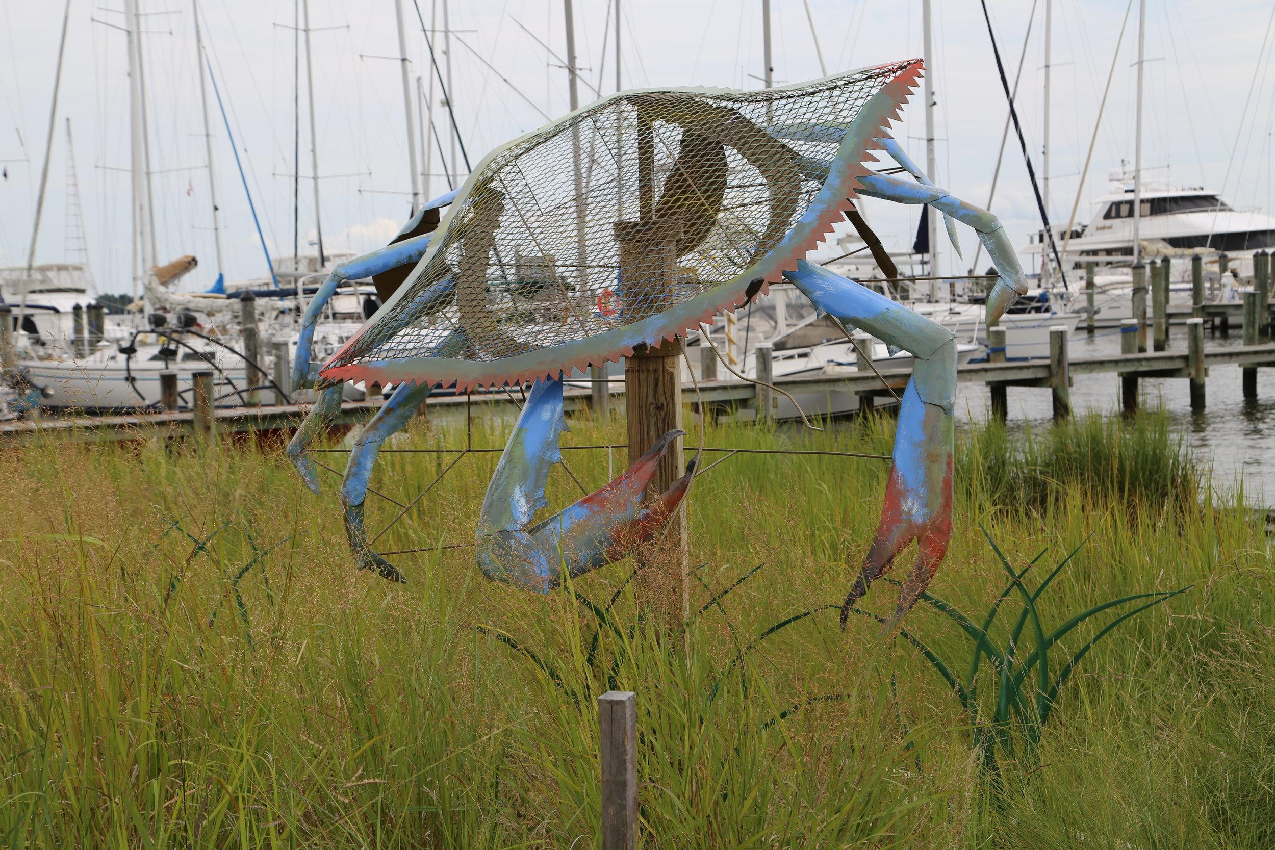 Blue Crab, 2017  Annapolis Maritime Museum, Annapolis, MD