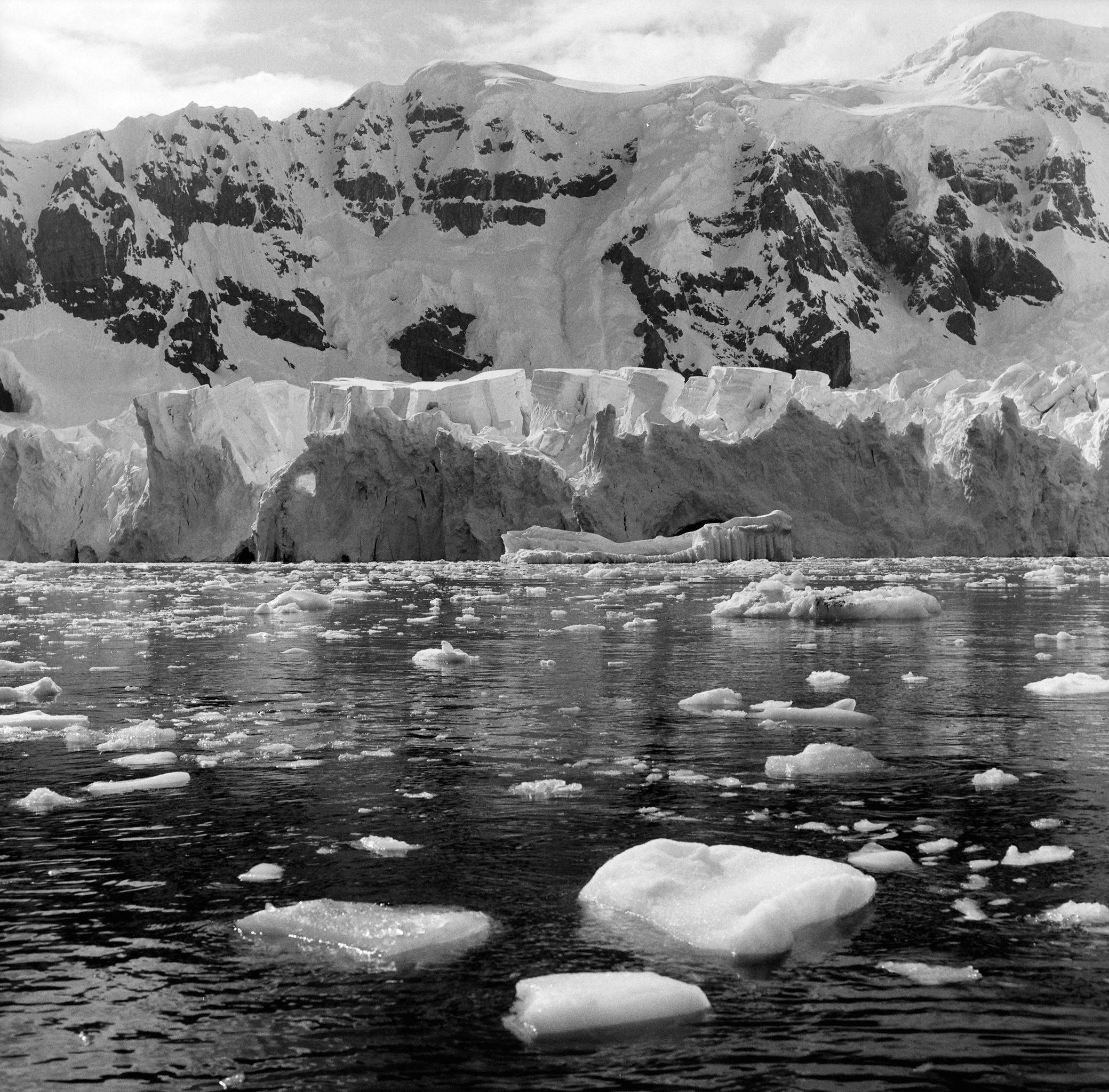 Antarctica Web (2).jpg