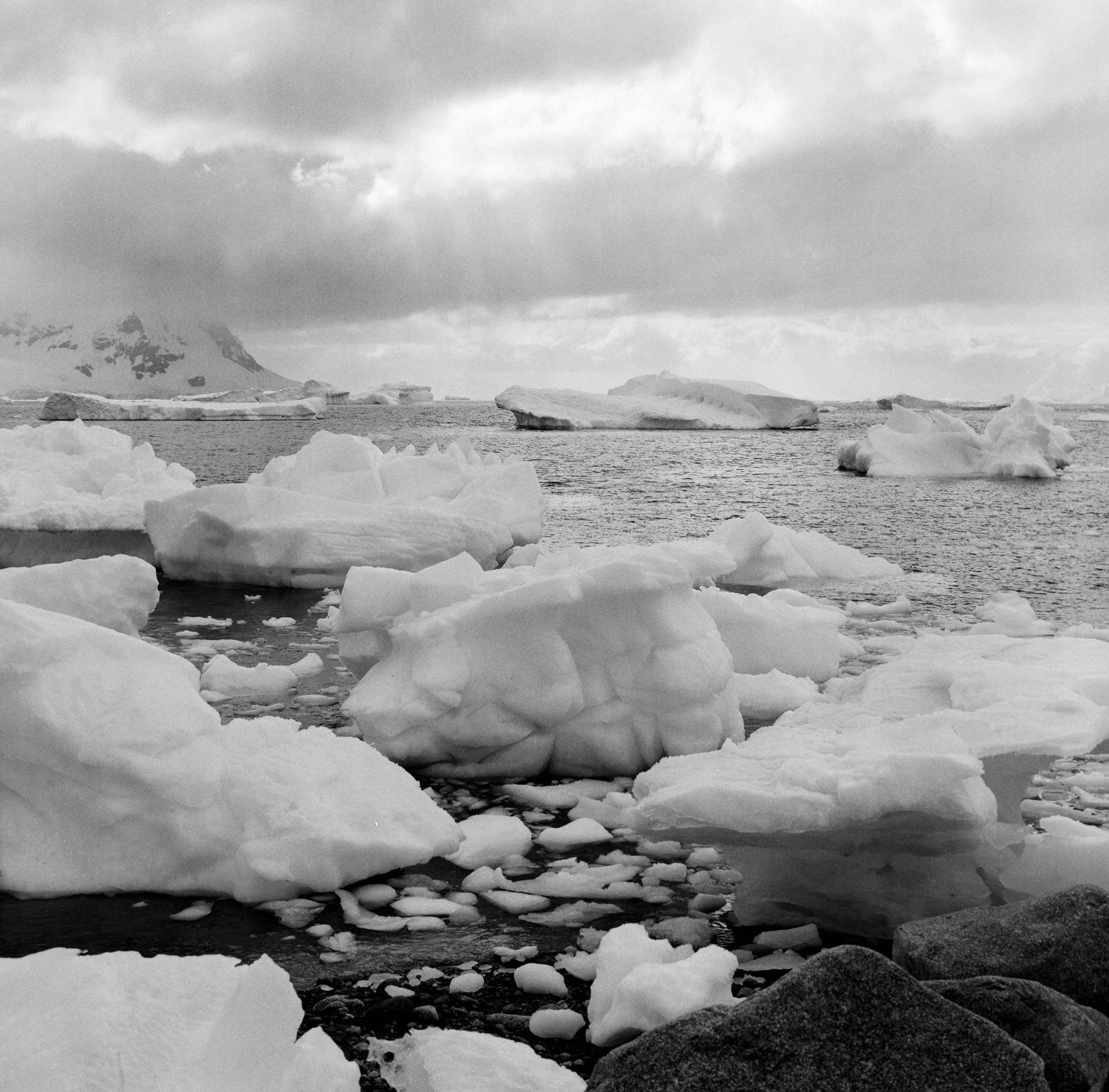 Antarctica Web (7).jpg