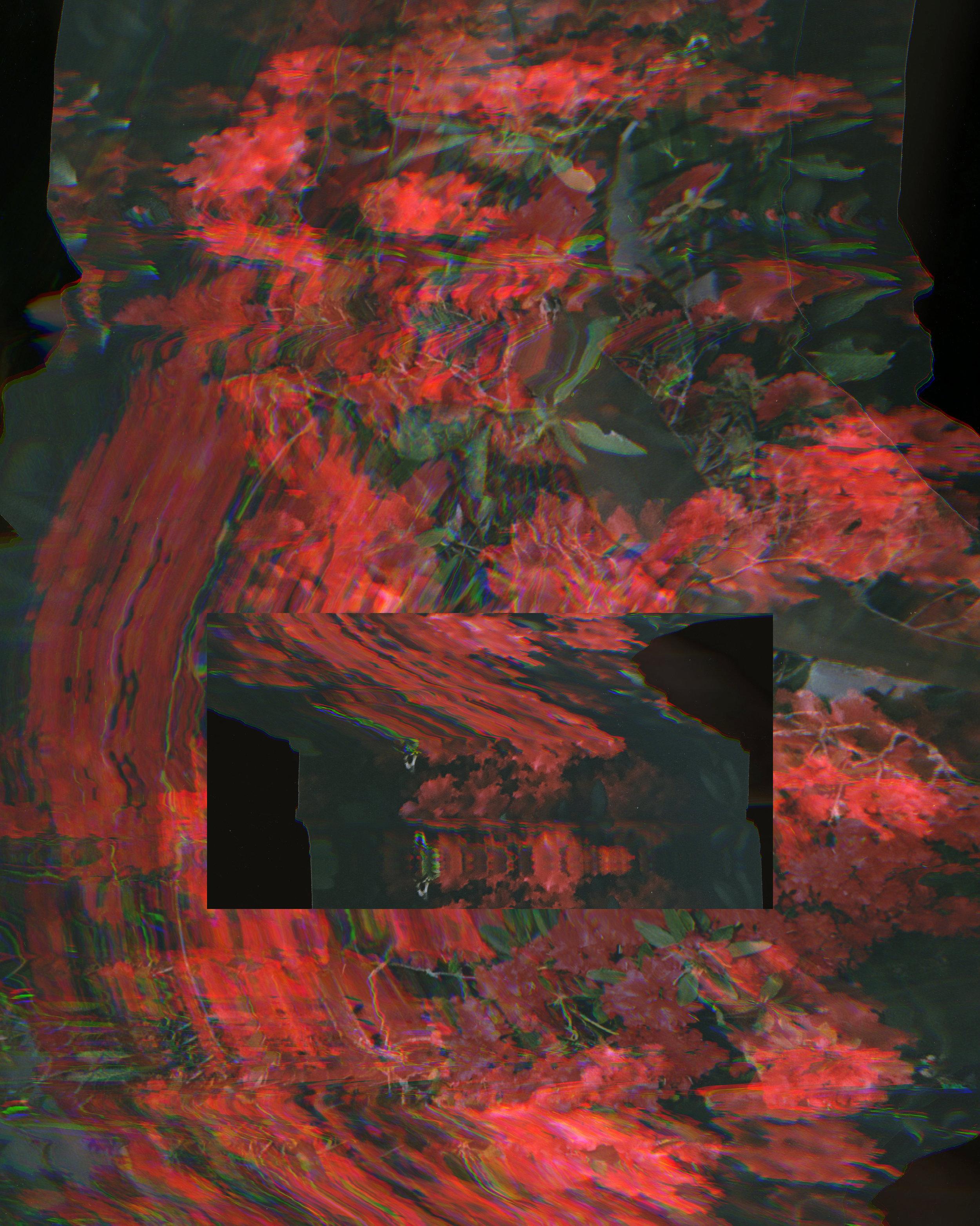 modernlandscape9.jpg