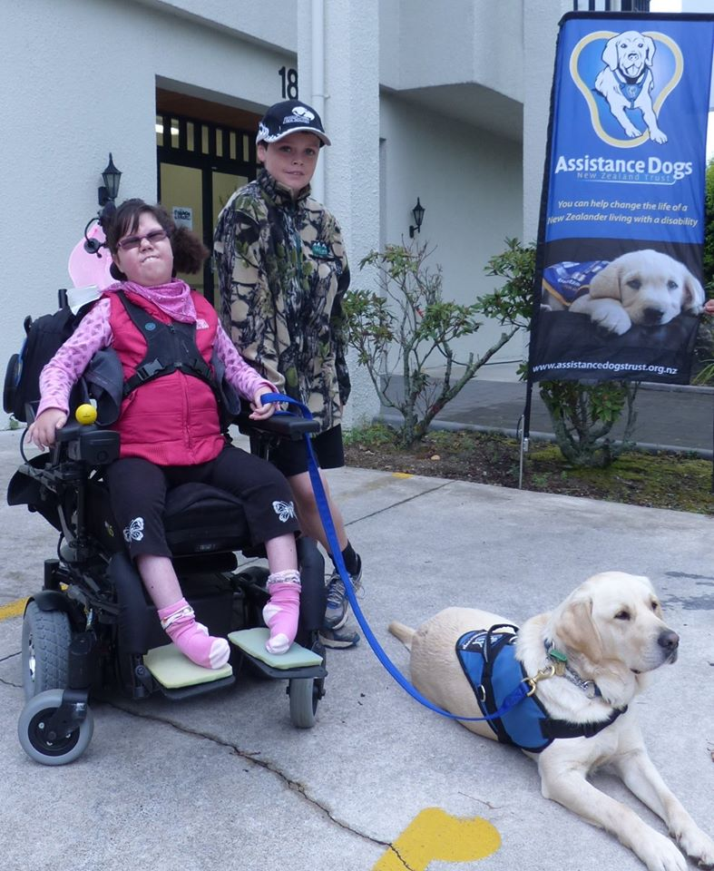 Assistance Dogs New Zealand is a charitable trust training dogs to assist individuals and their families whose lives are impacted by disability. To see Assistance Dogs application click  here . To find the Assistance Dogs New Zealand Trust website click  here