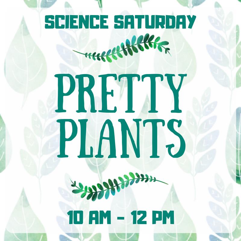 SCIENCE SATURDAY Pretty Plants.png