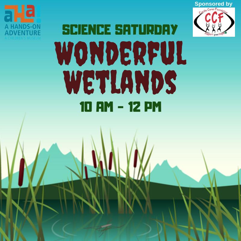 Science Saturday Wonderful Wetlands.png