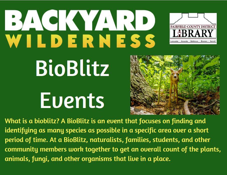 Backyard Wilderness Bioblitz post card 1.JPG
