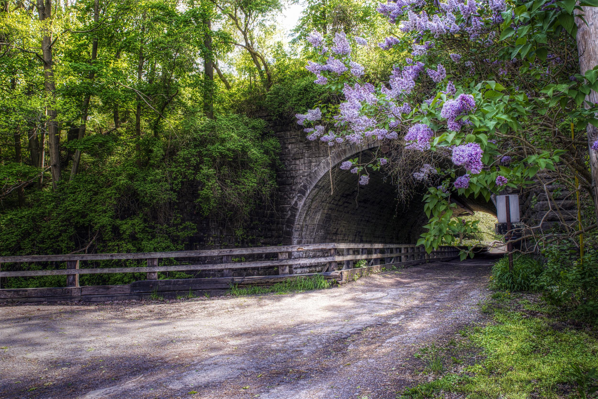 Corbett's Bridge.jpg