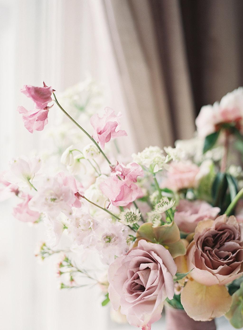 HeatherPaynePhoto_Wildflowers_133.jpg