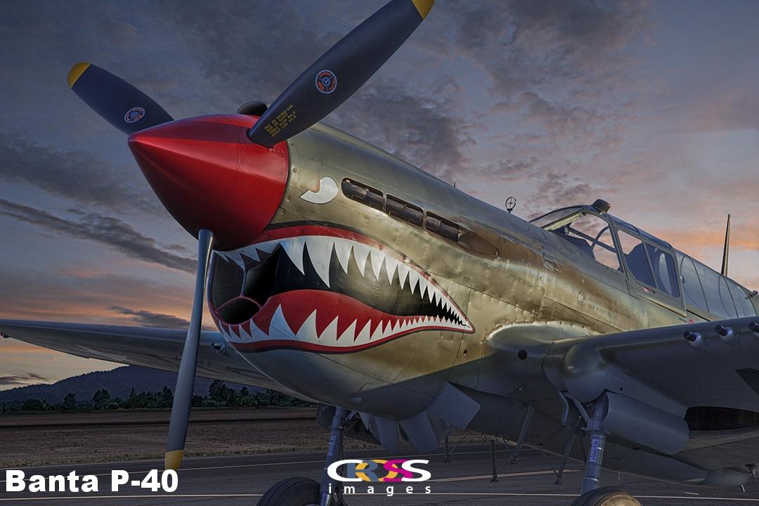 Banta P-40.jpg