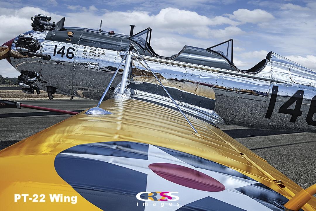 PT-22 Wing.jpg
