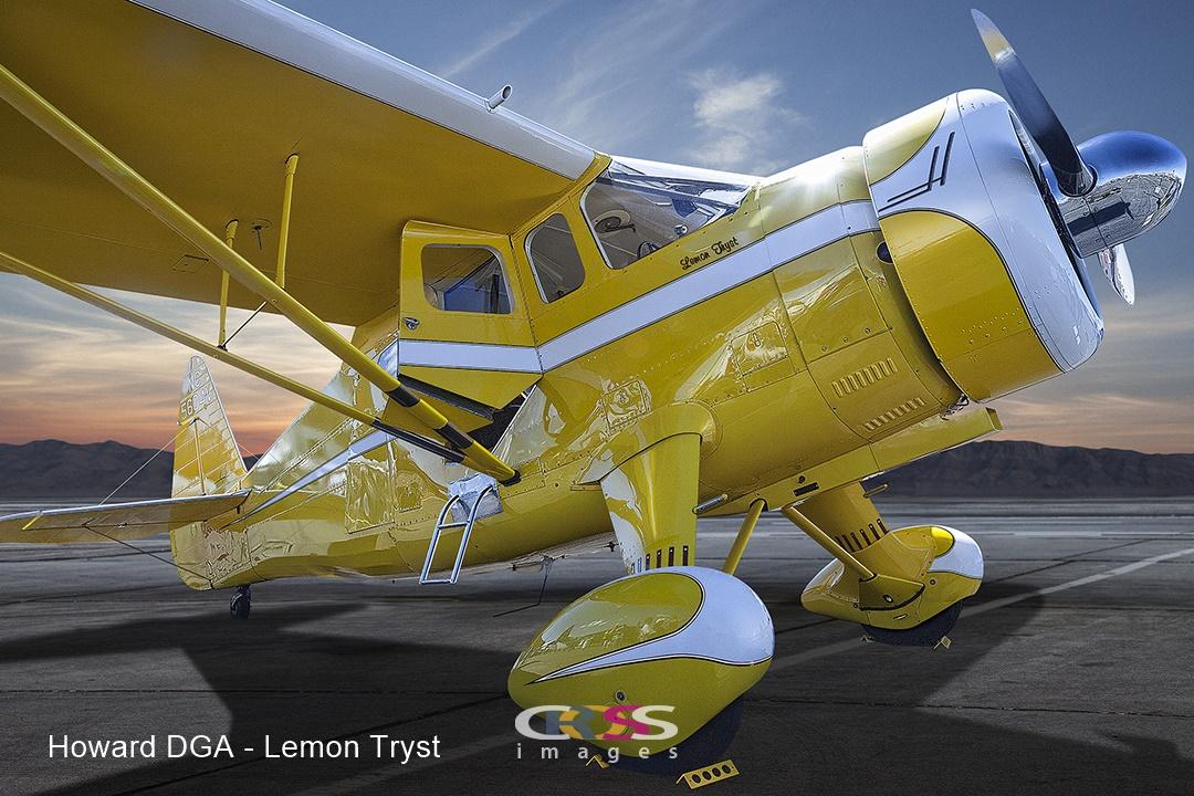 Howard DGA LemonText.jpg