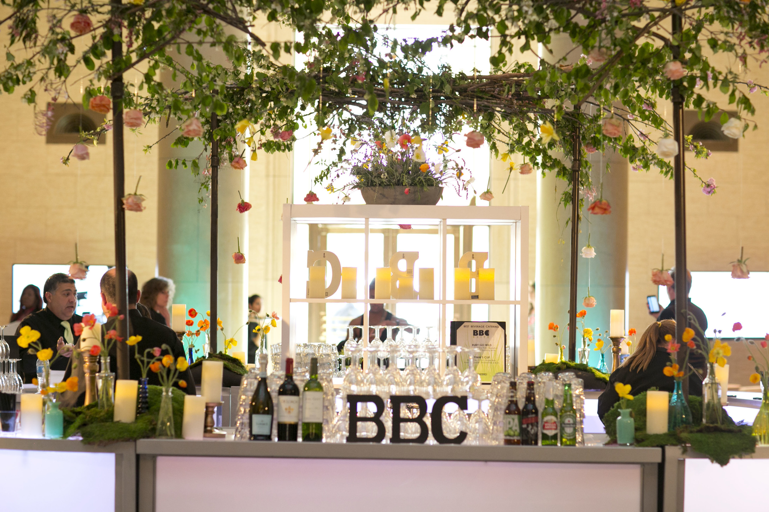 BBC Amy Burke.jpg