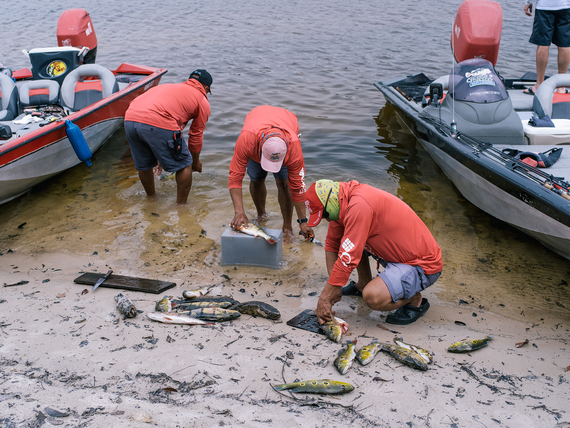 The guides clean the fish right in the river.